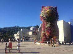 Guggenheim Bilbao - Il Gatto