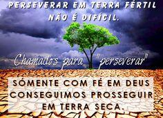 Perseverar 3