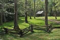A Cabin in the Woods Split Rail Fence - Love It!!