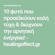 10 φυτά που προσελκύουν καλή τύχη & διώχνουν την αρνητική ενέργεια! - healingeffect.gr