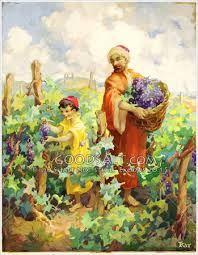 picking grape - Google'da Ara