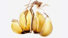 Garlic | The research is in: Here, six of the most potent weapons against the big C.