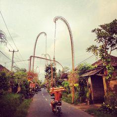 i can feel this Komodo Island, Gili Island, Ubud Indonesia, Bali Lombok, Paradise Island, Bali Travel, Travel Memories, Oh The Places You'll Go, Amazing Nature