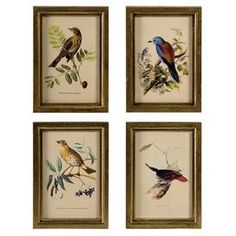 Four-piece wall art set with aviary illustrations.   Product: 4 Piece wall art setConstruction Material: MDFColor: Brown frameFeatures:  Delicately hand-painted transfer bird prints Will enhance any dcor  Dimensions: 9 H x 6.5 W each