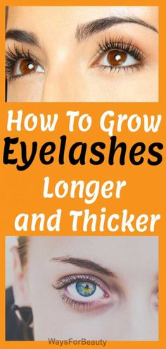 How To Grow Eyelashes Longer and Thicker at Home – Ways For Beauty - Eyeliner How To Grow Eyelashes, Thicker Eyelashes, Thick Eyebrows, Longer Eyelashes, Grow Natural Hair Faster, Get Thicker Hair, Anti Hair Loss Shampoo, Brow Serum, Increase Hair Growth