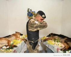 Many people remember a fallen soldier as a person in uniform.   Sometimes that soldier is the four legged friend who saved your life by being a bomb-sniffing dog and finding the IED and warned you about it before it explode. This is a sad but beautiful picture of pure respect to these fallen heroes. ♥ ♥