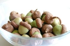 Edible Chocolate Cocoa Bean Candy Acorns by andiespecialtysweets, $87.50