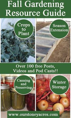 The Fall Gardening Resource Guide is a list of over 100 blog posts, videos and pod casts to help you will all your fall gardening questions! Join us!