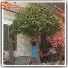 https://www.alibaba.com/product-detail/ST-BY30-Artificial-bnayan-trees-real_60548276301.html