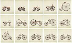 como fue que evolucionaron las bicicletas