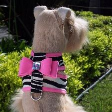 Susan Lanci Big Bow Crystal Contrasting Dog Harness- Zebra and Perfect Pink