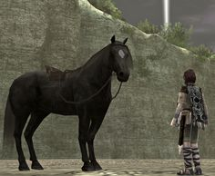 Wander and Agro Picture from Shadow of the Colossus. Best partner you ever had: Admit it. Video Game Industry, Sea Dragon, Pansies, Game Design, Game Art, Wander, Fantasy Art, Video Games, Horses