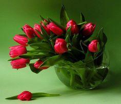 Unusual vase for tulips................