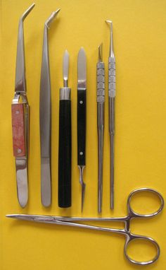 7Keramikinstrumente ,Halteklemme Mosquito,Pinzette,Dünesmesser,Gravierinstrument