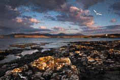 Stormy early morning light at Ullinish. MacLeods Tables. Isle of Skye. Scotland.