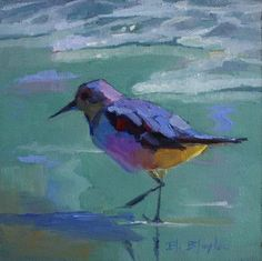 eli+blaylock+paintings | OIL PAINTING OF BEACH BIRD BY ELIZABETH BLAYLOCK
