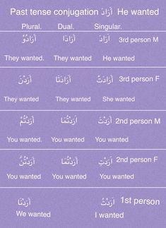 Arabic Verbs, Quran Arabic, Arabic Language, English Language, Teaching English, Learn English, Arabic Lessons, Root Words, Learning Arabic