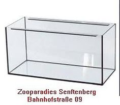Aquarium, Becken, Glas 100x50x50 cm in Brandenburg - Senftenberg | Aquarium und Aquaristikzubehör günstig | eBay Kleinanzeigen