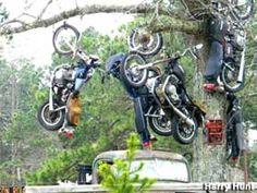 Motorcycle Hanging Tree in Jasper, Arkansas