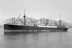 Holland America Line, Battleship, Belfast, Rotterdam, Hal Cruises, Opera House, Dutch, Louvre, Ocean