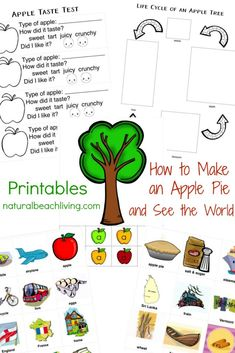 Free Apple Printables for Preschool and Kindergarten, Having an apple theme is the perfect theme for fall learning. Find fun Apple Activities and Printables for Preschool, Pre-K and Kindergarten Hands on Learning. Apple Science and Apple Crafts too! Kindergarten Science Activities, Apple Activities, Kindergarten Worksheets, Activities For Kids, Kindergarten Class, Activity Ideas, Craft Ideas, Preschool Apple Theme, Preschool Themes