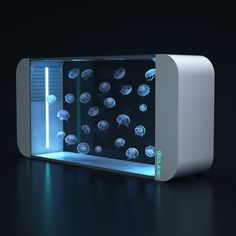 The Pulse 160 Jellyfish aquarium from Cubic Aquarium Systems