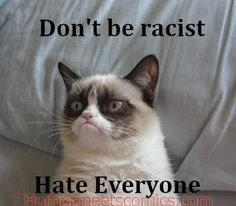 But, she is not racist ;) | Community Post: 14 Hilarious Grumpy Cat Memes That Will Make You Smile
