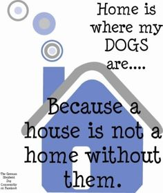Home is where my dogs are.... Because a house is not a home without them! #pamsdogtraining