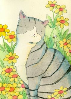 Gray tabby and the bee