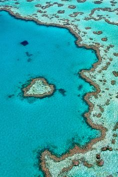Heart Reef | Austral