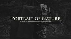 「自然の肖像 〜八百万の神々〜 / Portrait of Nature 〜Myriads of Gods〜」 The introduction of photographer Nobuyuki Kobayashi.  Dir+Cam+Edit : Yasuhito Tsuge Composer : Ayako…