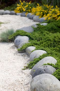 I love the look of the round stones with the soft and low ground cover