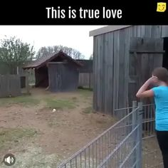 This is the loveliest (And maybe noisyness) show of love. What hearts animals have! Cute Funny Animals, Cute Baby Animals, Funny Cute, Farm Animals, Animals And Pets, Cute Creatures, Beautiful Creatures, Animals Beautiful, Animal Pictures