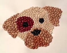 Image result for art with seeds and beans