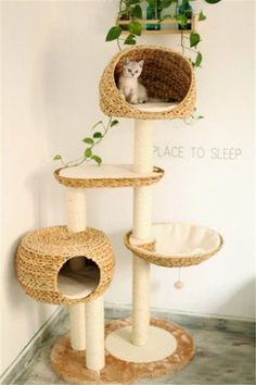 Cat tree and house for small cats