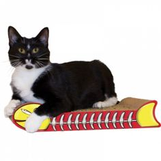 GRIFFOIR POISSON - Gratter – Contrairement aux griffoirs en tapis, la texture naturelle du Scratch 'n Shapes® ne ressemble en rien à une autre texture dans votre maison, facilitant l'entraînement de votre chat à ne pas gratter votre mobilier ou tapis. Jouer -En plus, chaque Scratch 'n Shapes® contient un sac d'herbe à chat certifiée biologique qui encourage votre chat à en redemander encore et encore.