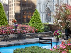 """This private garden (above) at 620 Fifth Avenue is not to be confused with """"The Top of the Rock"""" (30 Rockefeller Plaza), which is a 70th floor public observation deck with panoramic views. Because this exclusive roof space is on the seventh floor, the surrounding buildings such as St. Patrick's Cathedra feel close enough to touch. (this is one of three pins on my board titled << New York City: My Favorite Places >>"""