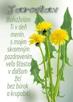 Jaroslav  Blahoželám Ti v deň menín, s mojim skromným pozdravením veľa šťastia v ďalšom žití bez búrok a krupobití Herbs, Plants, Board, Text Posts, Herb, Flora, Plant, Planting