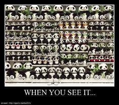 So many many pandas...cute!