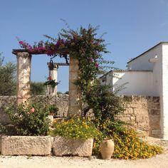 Masseria. pergola with climbing bouganvillea, stone walls and the sun. Entrance. pergola con bouganvillea rampicante, muri di pietra e sole. ingresso #entrance