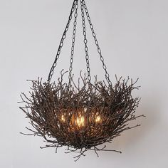 Twig Basket Chandelier