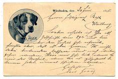 1895,Dt.Reich, Vorläufer Ansichtskarte Bernhardiner Hund, Wiesbaden
