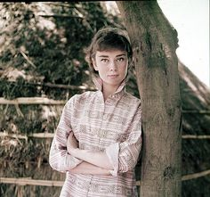 Audrey Hepburn in Rome, 1955. Photograph by Milton H. Greene.