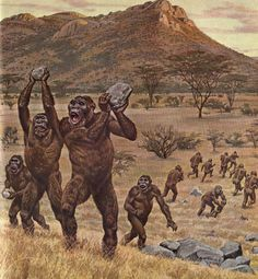 Paranthropus robustus Tribe by Jay H. Matternes