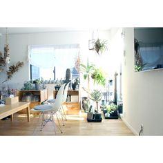 グリーンが素敵:「壁掛けTV」 「無印良品」 「シェルチェア」 「林檎木箱」 「NO GREEN NO LIFE」...etcが写っているAtsushiさんのインテリア実例写真を紹介します
