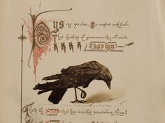 Illustration for The Jackdaw of Rheims, by Maurice Ernest Jessop: 1880s