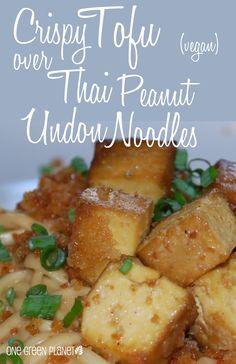 Crispy tofu over thai peanut udon noodles