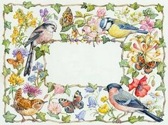 Birds, butterflies and summer flowers with ivy