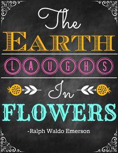 challenge: haal nieuwe bloemen in je huis als de nieuwste bloemen buiten uitkomen: krokussen