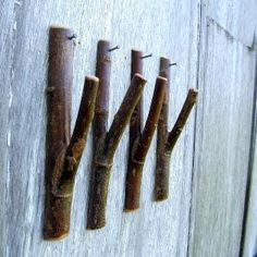 Perfect for the cabin!  Rustic Wall Hooks by TheBentTreeGallery on Etsy
